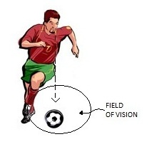 Eyes Down Results in Reduced Field of Vision